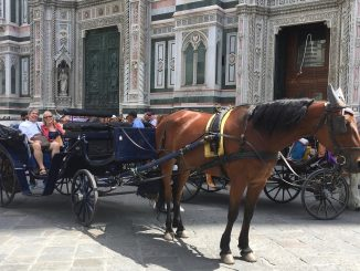 Florence Horse & Carriage May 2017